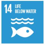 SDG 14 Sea